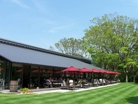 緑が清々しい庭園の中にある「カフェ・レストランLYS(リス)」