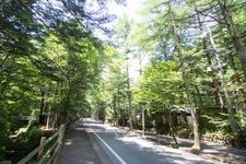 軽井沢サイクリングコース 自転車をレンタルして軽井沢見どころを走ろう 観光ルートプラン