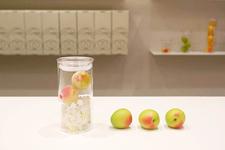 京都の「梅体験専門店 蝶矢(ちょうや)」の梅酒&梅シロップづくりを体験レポ