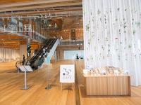 こちらの美術館には図書館も併設されています。その一角にある明るいカフェが【FUMUROYA CAFÉ】