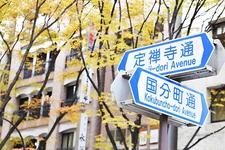 仙台のシンボルストリート・定禅寺通