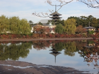猿沢池越しに望む五重塔。