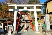 拝殿まで229段の階段が…! ちょっと大変ですが、一(いち)の鳥居をくぐって石段を昇ると願いが叶うと言われているんだとか♡