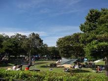 海浜 城南 公園 島