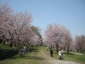 帯広市緑ケ丘公園