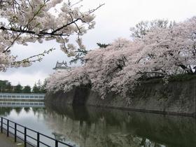 新発田城址公園