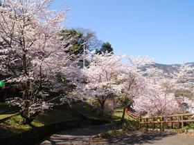 金竜山公園