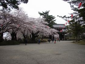센슈 공원