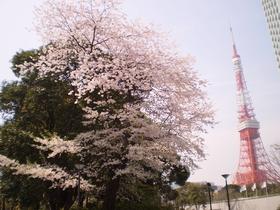 시바 공원