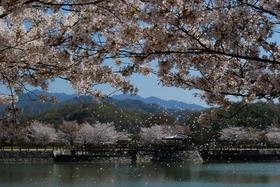 기카쿠 공원
