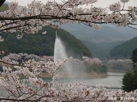 Ichifusa Dam