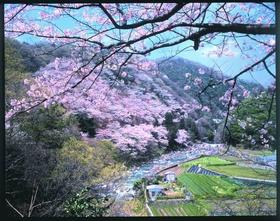 Settsukyo Park