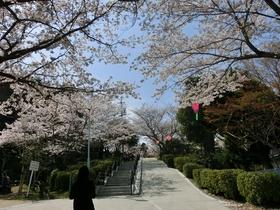 쓰카이라쿠 공원