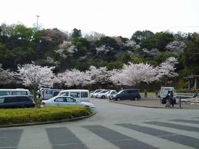 Bizan Park