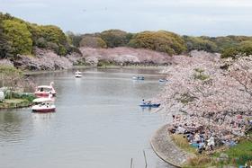 兵库县立明石公园