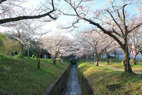 Myokengawa Ryokuchi Park
