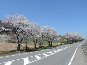 Mt. Yakurai