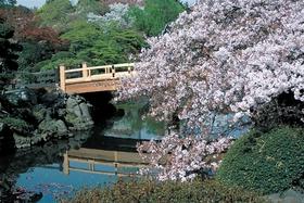 신주쿠 교엔 정원