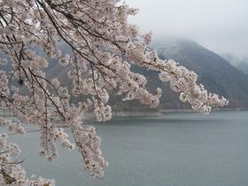 오쿠타마 호수