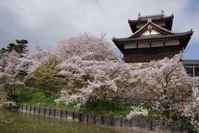 Koriyama Castle remains