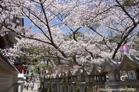 Shigisan Chogosonshi-ji Temple