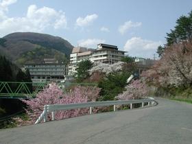 花巻南温泉峡