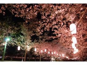 Tadamoto Park