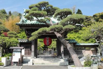 長谷寺 image