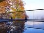 屈指の紅葉スポット十和田湖。目に映る全てが鮮やかな秋色に染まる絶景。湯に移る木の葉たちが郷愁を誘う