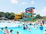 大人から子供まで楽しめる夏季限定のプールです。