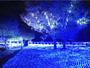 ハイジの村 12/1-夜間特別イベント スイスの森の冬景色