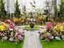 温室「奇跡の星の植物館」ラン展(イメージ)