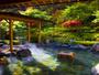 露天風呂からは四季折々の山野草がお楽しみ頂けます