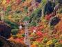 ◆寒霞渓◆紅葉の寒霞渓 11月