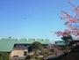 ◆総合4.7◆大海原に癒される全室オーシャンビューの温泉リゾート