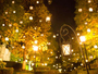 【 冬 季 】ガーデンをランタンとイルミネーションが灯る、ひかりの森