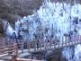 尾の内氷柱【冷ッケー】(秩父郡小鹿野町)吊り橋から見える氷柱は高さ50m幅80mも有り感動です。