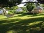 ゆったりした敷地と木々に囲まれたグランピングテント