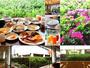 朝食ブッフェ5月中旬頃には、窓辺のつつじが見頃を迎えます♪