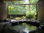 新緑の季節の家族湯
