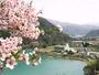 高遠城址公園は徒歩圏内!湖畔を見下ろす温泉が楽しめるホテル