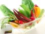 自社ファームから届いた新鮮野菜。他では味わえない素材の味をお楽しみ下さい。
