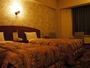 ベットが二つ並ぶ洋室。どこか懐かしさを感じるレトロな客室はなぜか落ち着く空間。