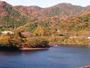 松川湖の紅葉