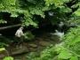 フライ、餌釣、ルアーが楽しめます。また、近くの千代田湖ではバスフィッシング、ヘラブナ釣りもできます。