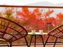 秋には色とりどりに染まった仙谷原高原をお楽しみいただけます