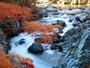 馬瀬川の紅葉風景♪ 下呂の豊かな自然を満喫できます。
