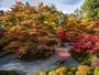 秋の庭園風景/紅葉は10月下旬-11月中旬頃)