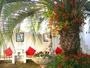 雑誌の写真撮影などによく使われる花の咲き乱れるパティオ(中庭)