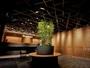 シンボルツリーからは木々の香りがただよい、天井は伝統的な組木格子を使用。
